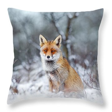 Red Fox Blue World Throw Pillow by Roeselien Raimond