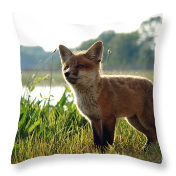 Red Fox Kit Throw Pillow by Olivier Le Queinec