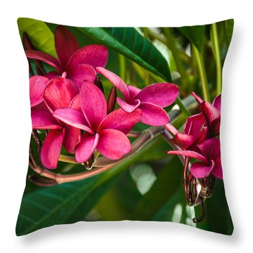 Red Frangipani Flowers Throw Pillow