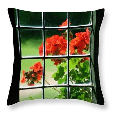 Red Geranium Through Leaded Window Throw Pillow