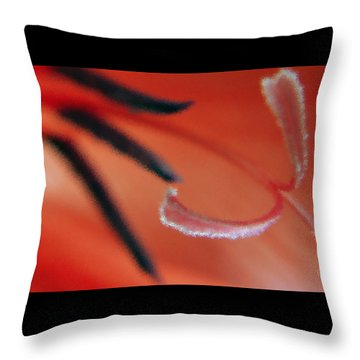 Red Gladiolus Abstract Throw Pillow by Ben and Raisa Gertsberg