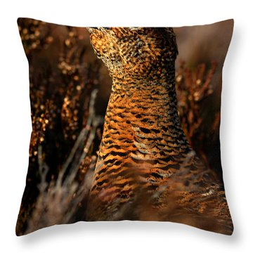 Red Grouse Throw Pillow