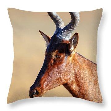Red Hartebeest Portrait Throw Pillow by Johan Swanepoel