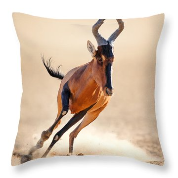 Red Hartebeest Running Throw Pillow by Johan Swanepoel