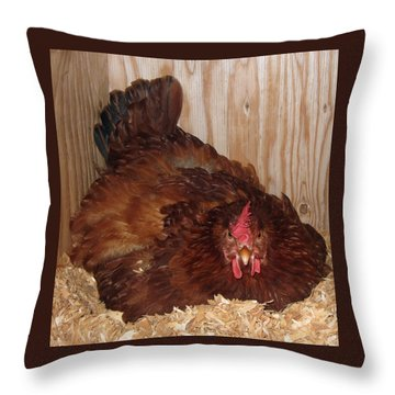 Red Hen Throw Pillow