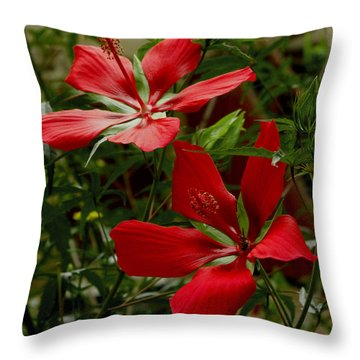 Red Hibiscus Blooms Throw Pillow