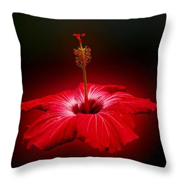 Red Hibiscus Tropical Flower Wall Art Throw Pillow