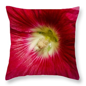 Throw Pillow featuring the photograph Red Hollyhock Althaea Rosea by Sue Smith