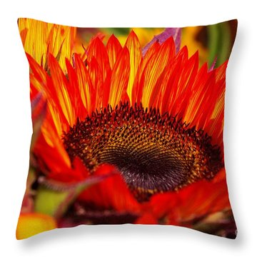 Red Hot  Throw Pillow by John S