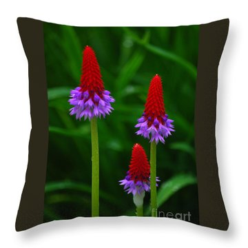 Red Hot Pokers Throw Pillow by Cynthia Lagoudakis