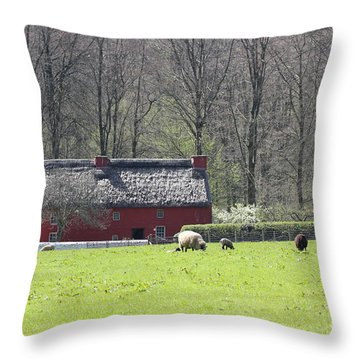 Red House Throw Pillow by Vicki Spindler