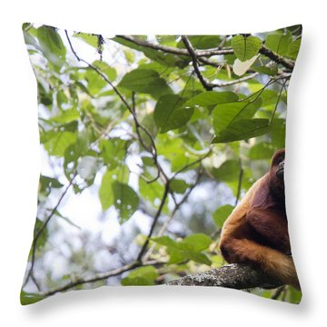 Red Howler Monkey Sitting In A Tree Throw Pillow