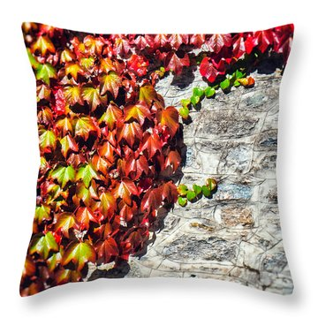 Throw Pillow featuring the photograph Red Ivy On Wall by Silvia Ganora