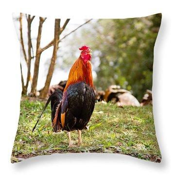 Red Jungle Fowl - Moa Throw Pillow by Scott Pellegrin