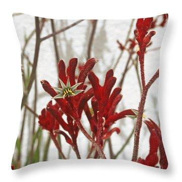 Red Kangaroo Paw Throw Pillow by Ben and Raisa Gertsberg
