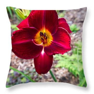 Red Lady Lily 3 Throw Pillow