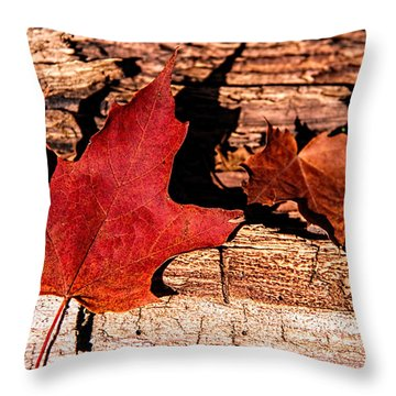 Red Leaf On Old Wood Throw Pillow