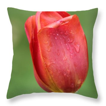Red Leaner Throw Pillow by Bill Woodstock