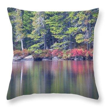 Red Leaved Shrubs Dot A Shoreline Throw Pillow