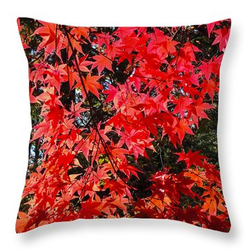 Red Leaves 2 Throw Pillow
