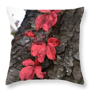 Red Leaves On Bark Throw Pillow