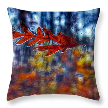 red leaves on windshield Dry Brush Throw Pillow