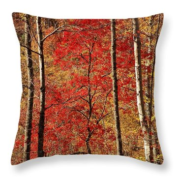 Red Leaves Throw Pillow by Patrick Shupert
