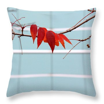 Throw Pillow featuring the photograph Red Leaves by Viviana  Nadowski