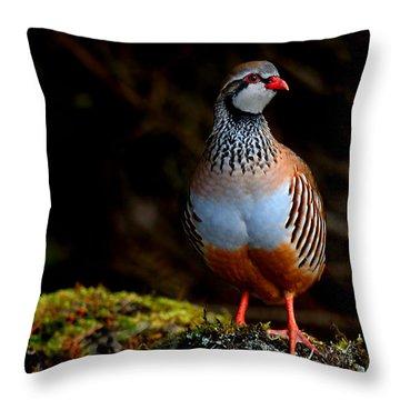 Red-legged Partridge Throw Pillow
