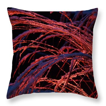 Red Light In Snow-heavy Grass Throw Pillow by Mick Anderson