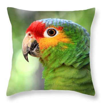 Red-lored Amazon Parrot Throw Pillow by Teresa Zieba