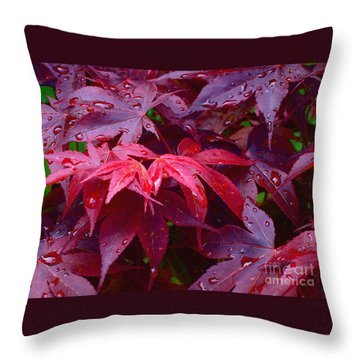 Throw Pillow featuring the photograph Red Maple After Rain by Ann Horn