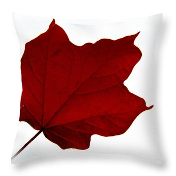 Red Maple Now Throw Pillow by Tina M Wenger