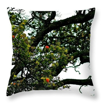 Red Ohia Lehua Tree Throw Pillow
