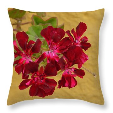 Red On Yellow Throw Pillow by Lew Davis