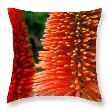 Red-orange Flower Of Eremurus Ruiter-hybride Throw Pillow