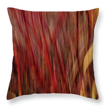 Red Osier Dogwood Throw Pillow