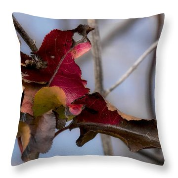 Red Over Branch Throw Pillow