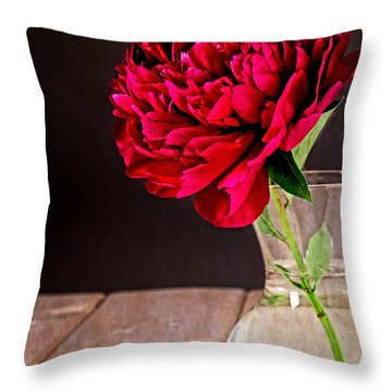 Red Peony Flower Vase Throw Pillow by Edward Fielding