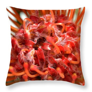 Red Pincushion Close Up Throw Pillow by Scott Lyons