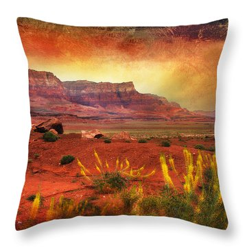 Red Planet Throw Pillow by Barbara Manis
