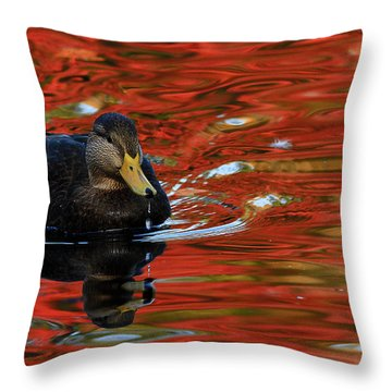Red Pond Throw Pillow by Karol Livote