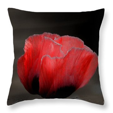 Throw Pillow featuring the photograph Red Poppy Flower by Nicola Fiscarelli