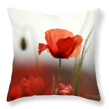 Red Poppies Throw Pillows