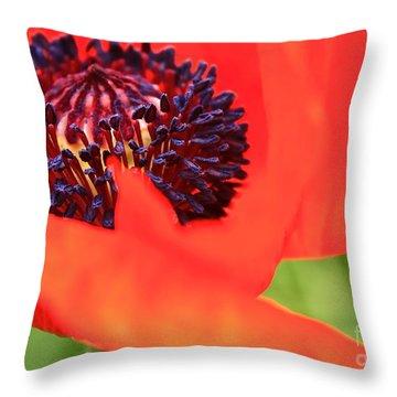 Red Poppy Throw Pillow by Linda Bianic