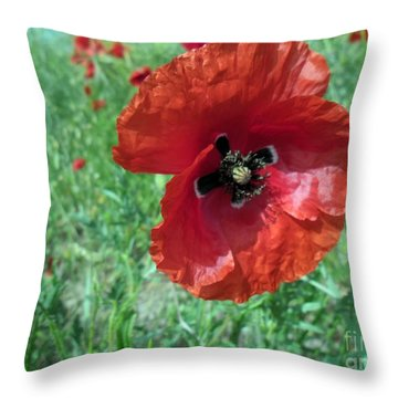 Throw Pillow featuring the photograph Red Poppy by Vesna Martinjak