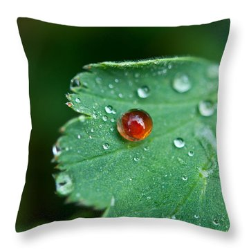 Throw Pillow featuring the photograph Red Rain Drop by Sabine Edrissi