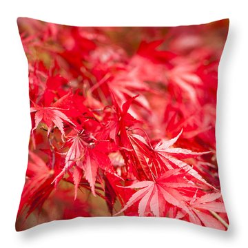 Red Red Red Throw Pillow by Anne Gilbert