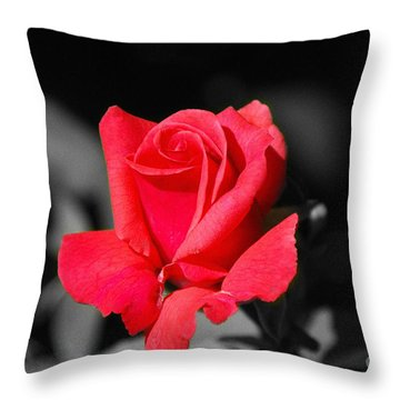 Red Red Rose - Sc Throw Pillow