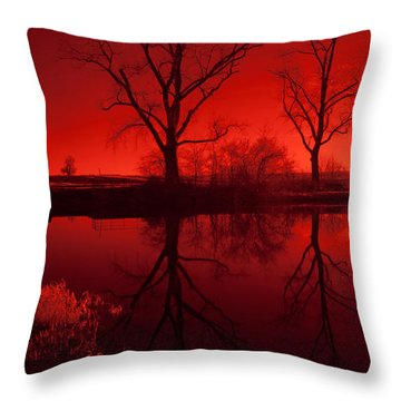 Red Reflections Throw Pillow by Miguel Winterpacht